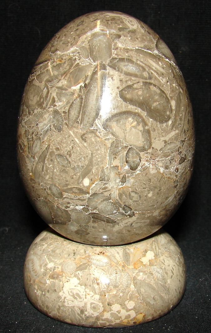 http://www.tumbled.com/fossilegg-30.jpg (582341 bytes)